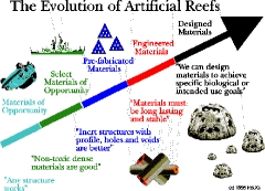 Evolution of Artificial Reefs