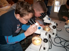 Kids Studying Reef Balls with Microscope